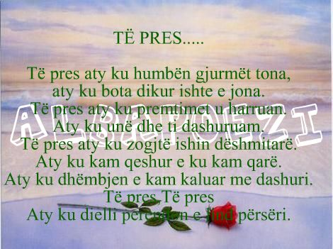 poeziper ty