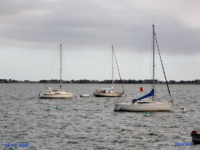 Golfe du Morbihan . Bateaux. dans Bretagne bateau10
