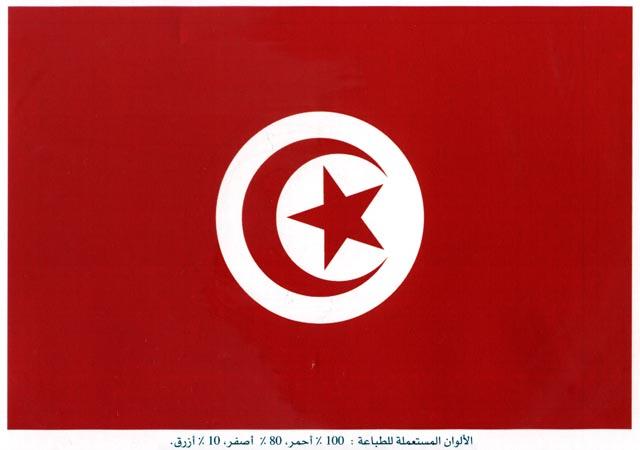 اسباب اختيار العلم دوله tun_0010.jpg