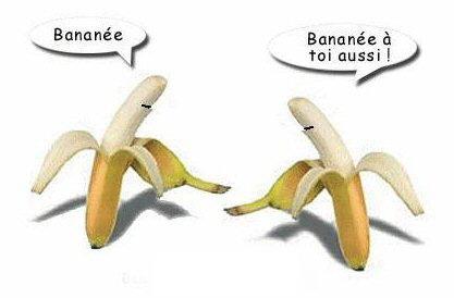 http://i27.servimg.com/u/f27/11/75/30/21/banane10.jpg