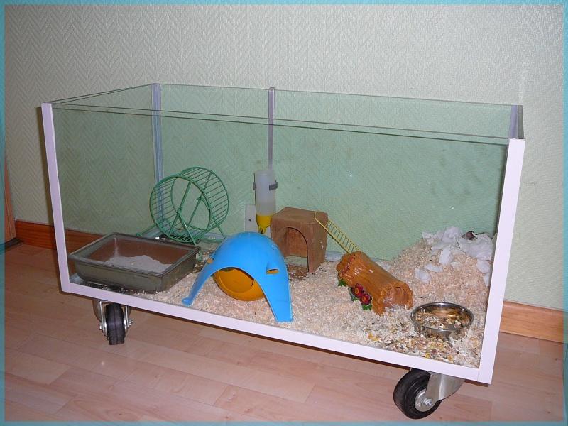Cage vos cages seulement photos pas de commentaire for Abreuvoir lapin fait maison