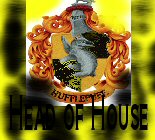 Hufflepuff Head of House