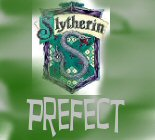 Slytherin Prefect, Divination teacher