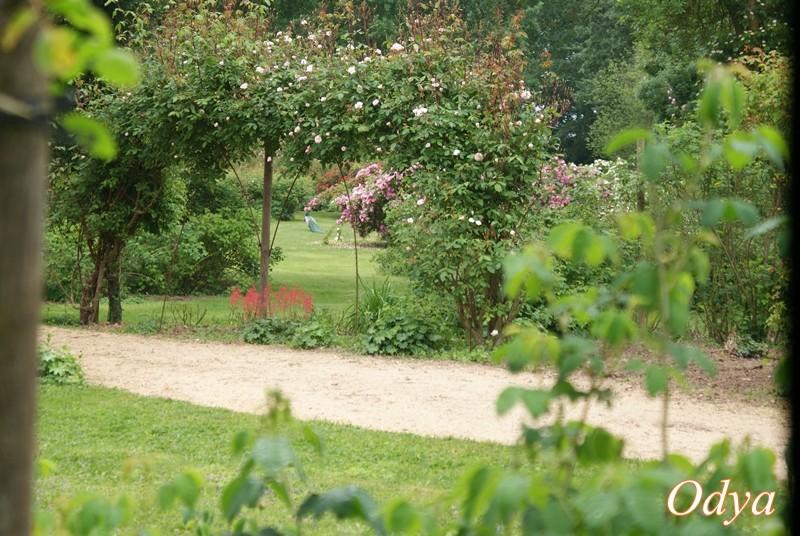 Les chemins de la rose 49 doue la fontaine page 2 - Jardin de la rose doue la fontaine ...