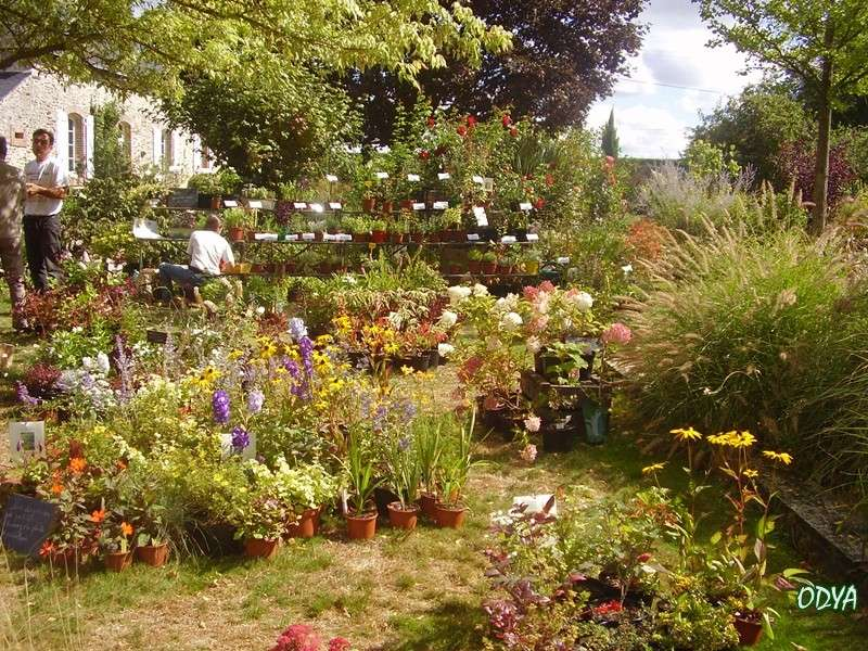 F te des plantes au jardin secret du grand boulay for Bastide au jardin secret