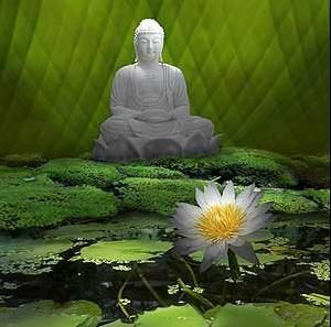 Images gifs bouddha page 2 for Lotus garden meditation center