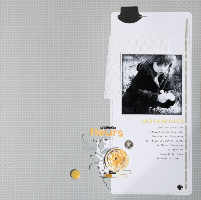 http://i27.servimg.com/u/f27/13/97/70/50/hp-ser13.jpg