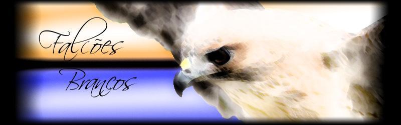 Falcões Brancos