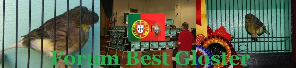 BestGloster