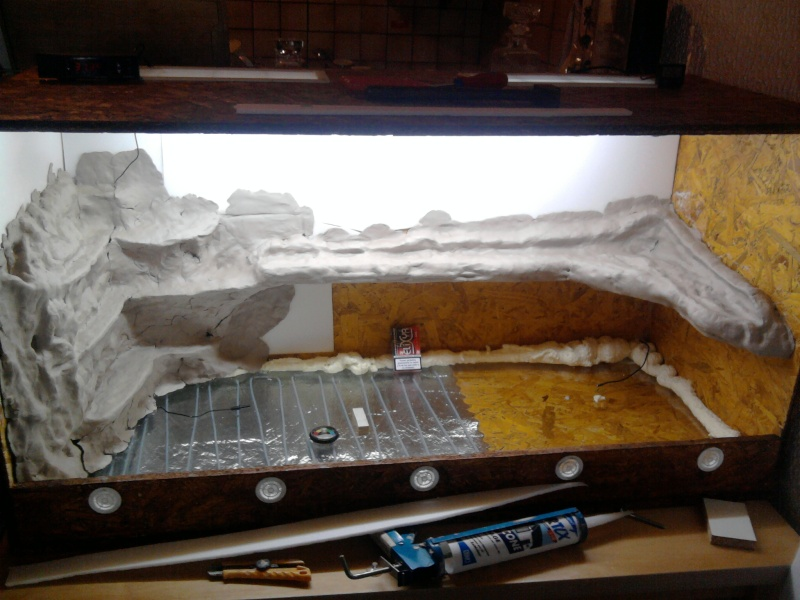 Terrarium en construction - Decor de fond terrarium desertique ...