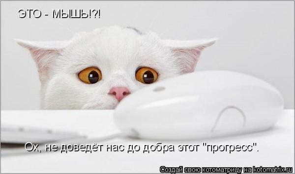 http://i27.servimg.com/u/f27/15/77/94/13/kotyca12.jpg