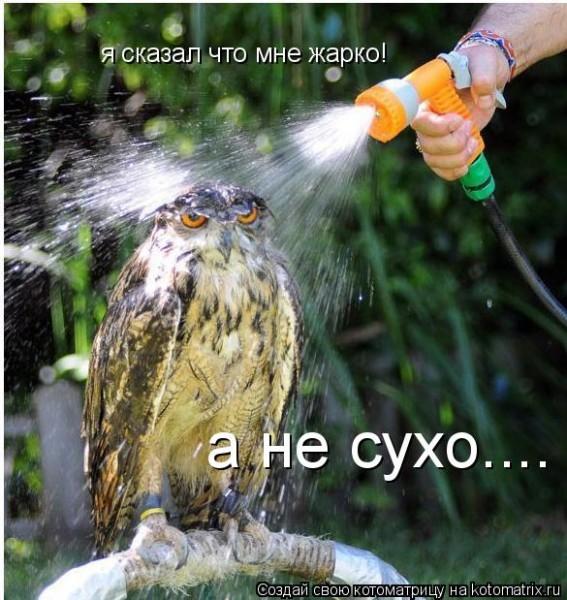 http://i27.servimg.com/u/f27/15/77/94/13/ne_mur10.jpg
