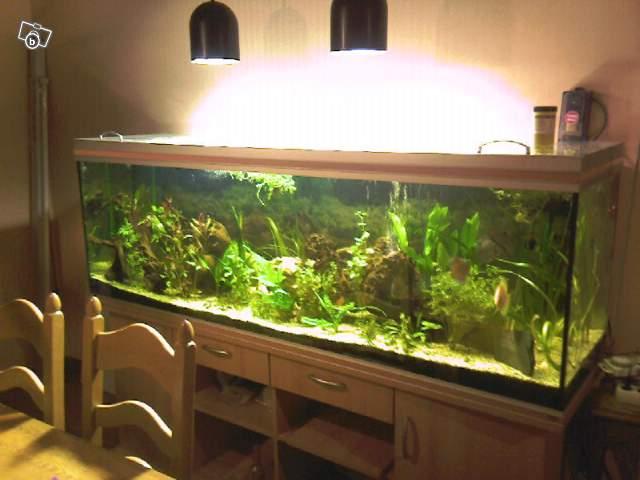 Aquarium 600 litres neuf 28 images mon aquarium 30 for Aquarium 600l