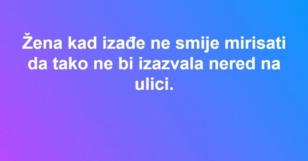zenaaa10.jpg